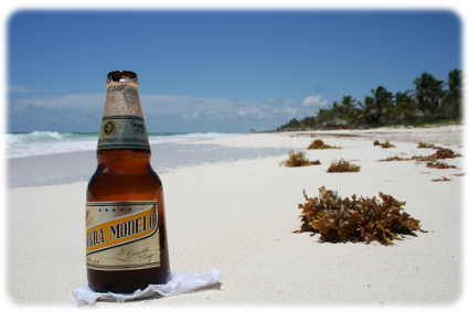 Picture of a Modelo Beer in Tulum taken by Cancun Manny while on a private tour